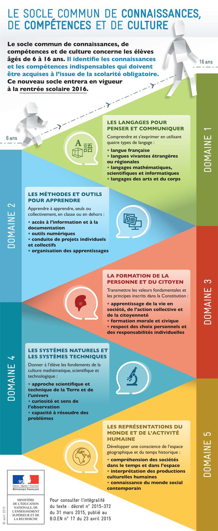 Socle commun infographie