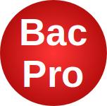 Logo Bac Pro