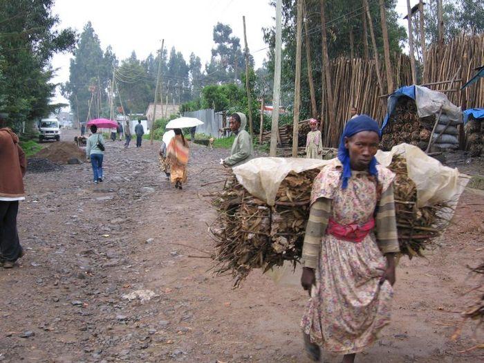 le bois pour la cuisson Addis Abeba