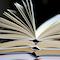 vignette_book