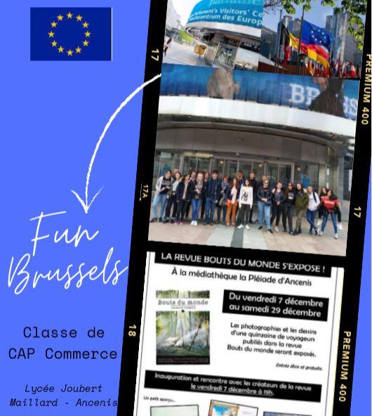 Plaquette projet Bruxelles