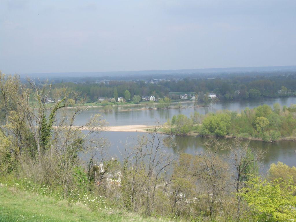 le confluent de la Vienne et de la Loire
