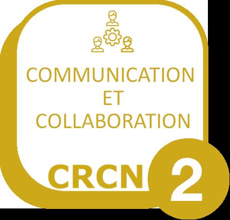 Domaine 2 : Communication et collaboration