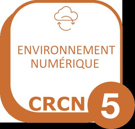 Domaine 5 : Environnement numérique