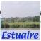 estuaire2.jpg