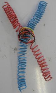 filosome2