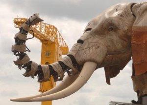 Grand Eléphant