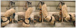 commande hydraulique d'animation-patte