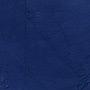 Jan Robert Leegte, Blue Monochrome.com, 2008