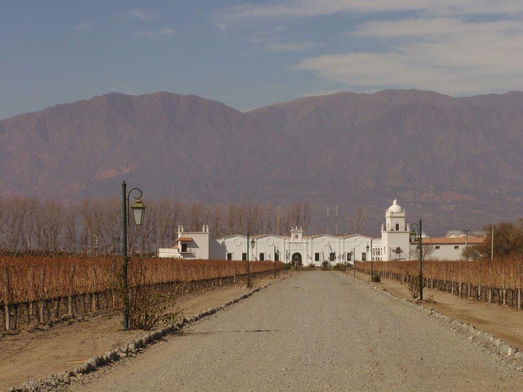Le vignoble près de Cafayate, au Nord de l'Argentine, pendant l'hiver austral.