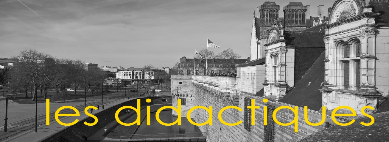 Didactique français-histoire-géographie