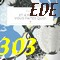 vignette EDE 303